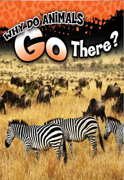 Why_Do_Animals_Go_There